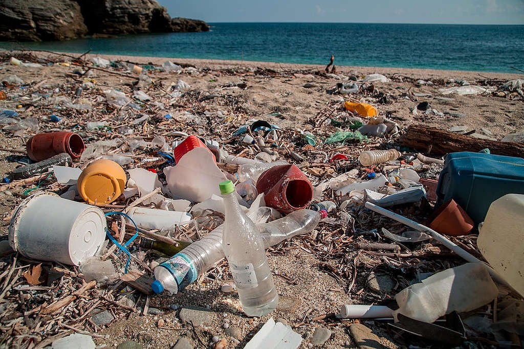 Plastic Brand Audit Activity in Greece. © Constantinos Stathias / Greenpeace