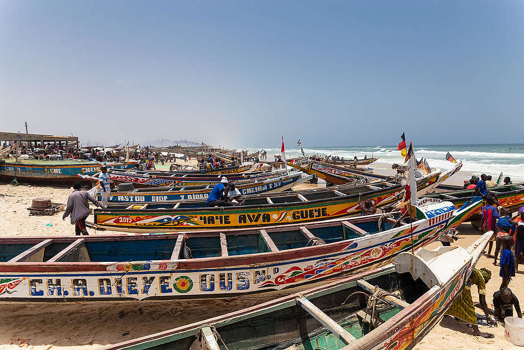 Everyday life in the Fishing Village of Fass Boye, Senegal. © Elodie Martial / Greenpeace