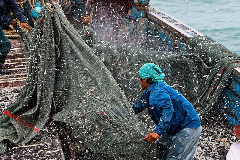 Destructive Fishing Methods in the Gulf of Thailand. © Athit Perawongmetha / Greenpeace