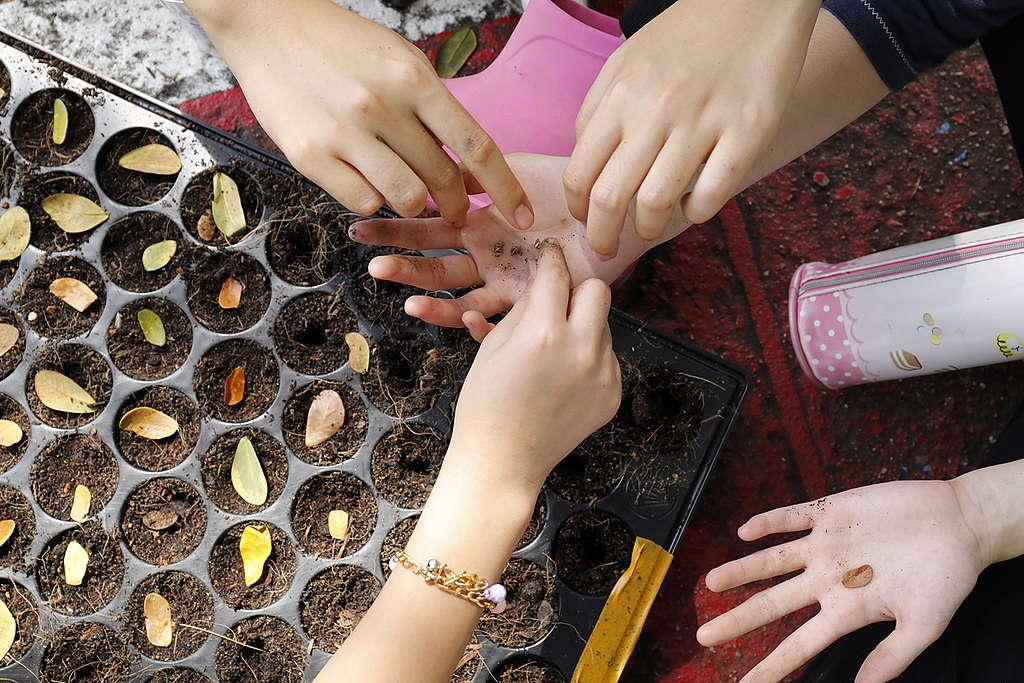 เด็กนักเรียนเรียนรู้เรื่องเมล็ดพันธุ์ © Roengchai  Kongmuang / Greenpeace