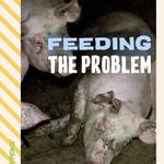 ป้อนอาหารให้ปัญหา : ความอันตรายที่เพิ่มขึ้นการทำฟาร์มปศุสัตว์ในยุโรป