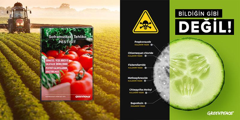 Soframızdaki Tehlike: Pestisit