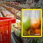 Türkiye'de Marketlerin Plastik Ayak İzi Araştırması
