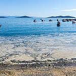 Müsilaj veya diğer adıyla deniz salyası nedir?