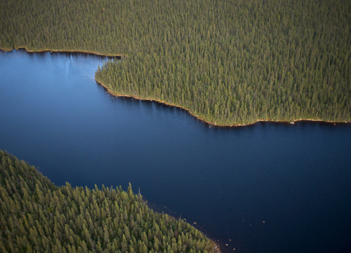 Ariel view of Canada' boreal forest and one of its rivers | Greenpeace