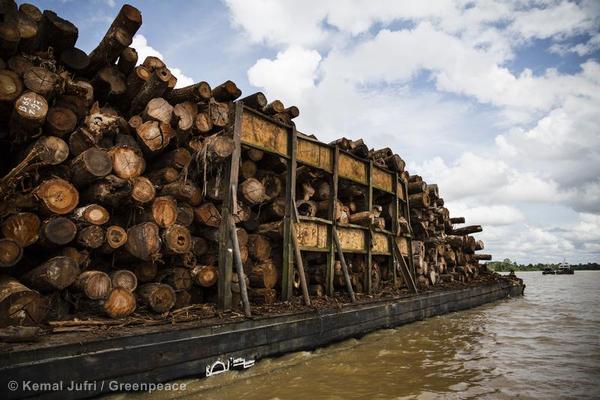 Indonesian Forests Moratorium