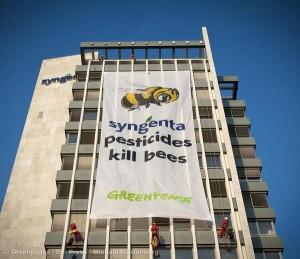 Bees Protection Action at Syngenta in Basel Bienenschtzerinnen und Bienenschtzer klagen an: Syngenta Pesticides Kill Bees!