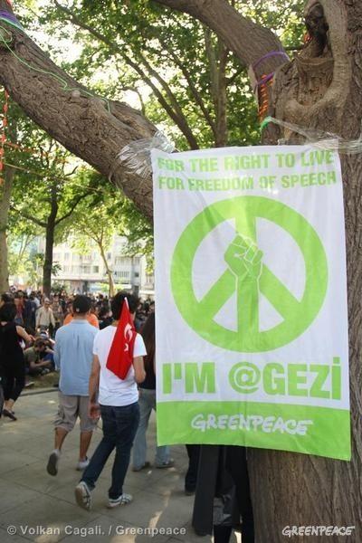 IamGezi