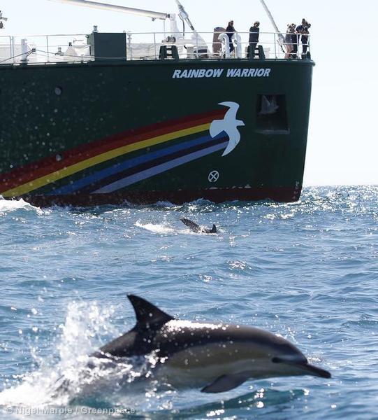 Rainbow Warrior in New Zealand