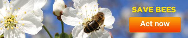 blog-ad-bees