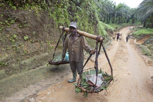 Palm Oil Worker in Cameroon