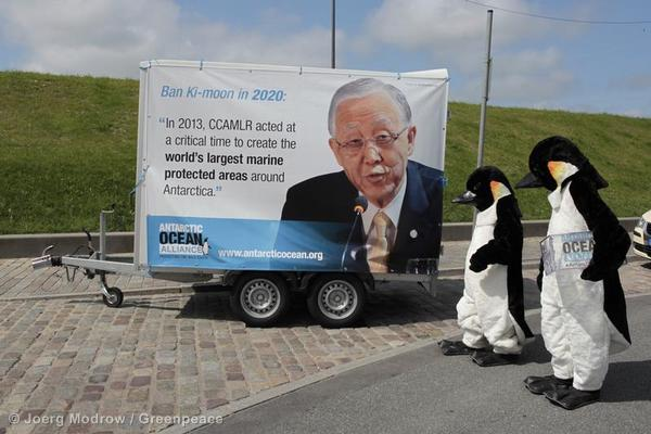 Activists dressed as penguins visit the  Commission for the Conservation of Antarctic Marine Living Resources, CCAMLR, in Bremerhaven, Germany.