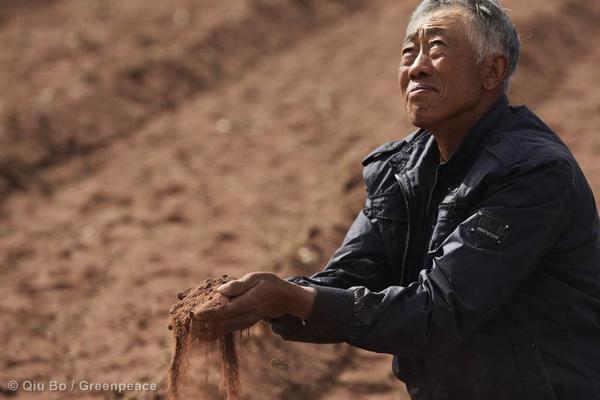 A Decade Of Struggle: The Ordos Grasslands