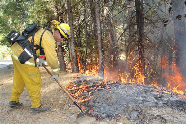 What you don't know about forest fires