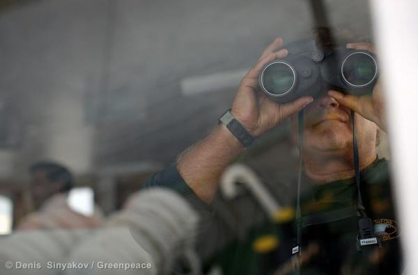 Captain Peter Willcox  looks out from the bridge of the Greenpeace ship, Arctic Sunrise, September 14, 2013.