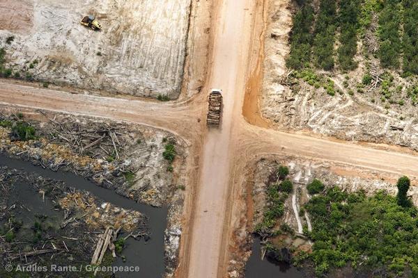 Aerial Documentation in Sumatra