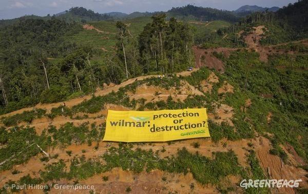 WilmarAction