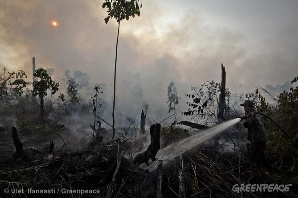 Fighting Forest Fires in Sumatra