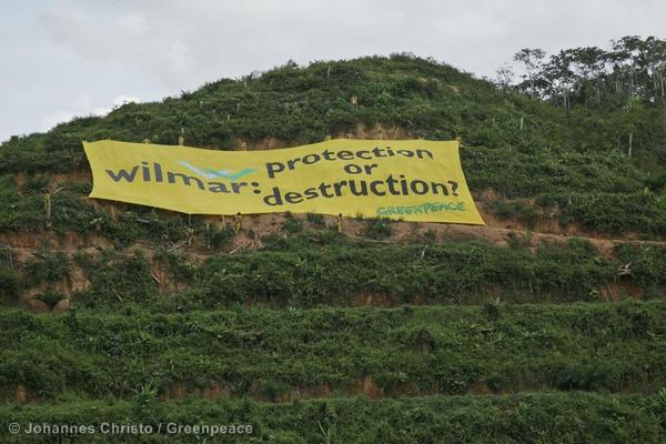 Banner at Wilmar Palm Oil Concession in Sumatra