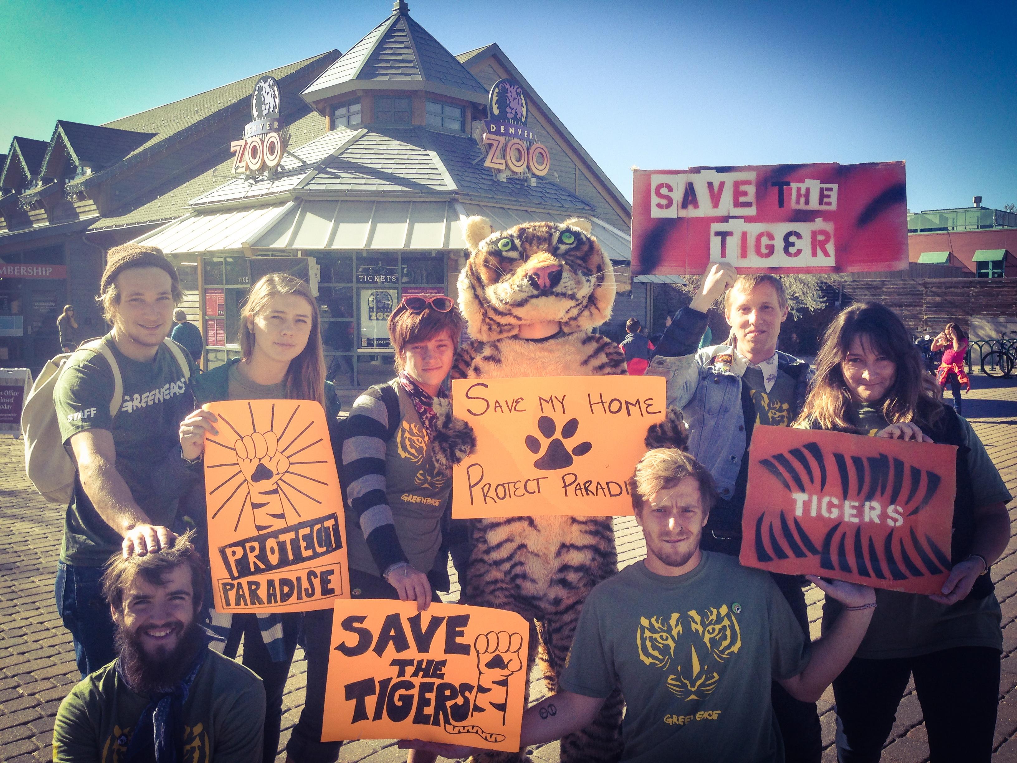 Tiger enthusiasts in Denver, Colorado