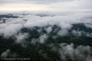 Clouds over Forests in the Amazon