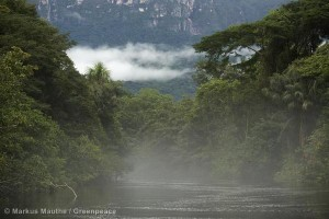 Amazon Rainforest in Brazil Amazonas Regenwald in Brasilien