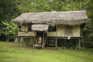 Awane Community Dwelling in Papua New Guinea