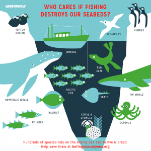 rp_Seattle_Eco_Infographic-300x300.png