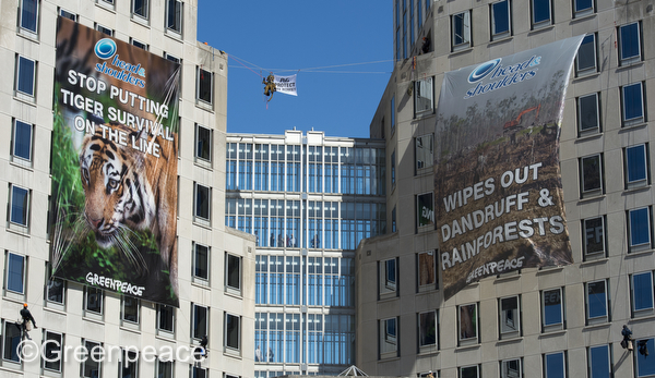 Deforestation Protest at Procter & Gamble Headquarters