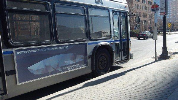 Boston fin whale ad