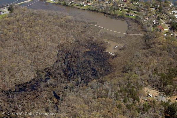 Oil seeps into a marshy waterway near Interstate 40 in Arkansas after Exxon's Pegasus pipeline burst in March, 2013,