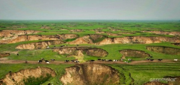 Sinkholes in Inner Mongolia, the result of subsidence caused by mining's lowering of the water table.