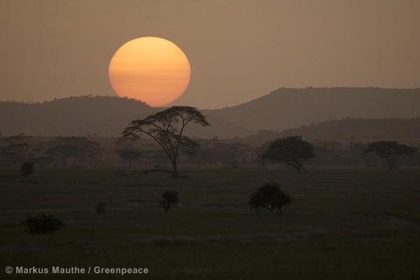 Landscape in the Savanna in TanzaniaLandschaft in der Savanne