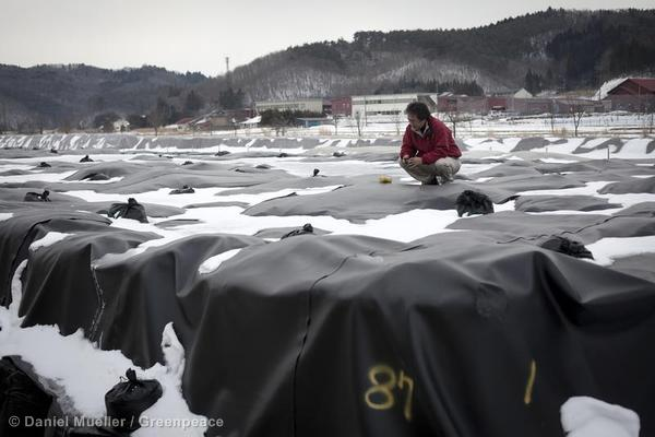 A temporary nuclear intermediate waste storage in the Prefecture Fukushima, Japan. Radioactive polluted soil, branches and leafs are stored in black sacks.