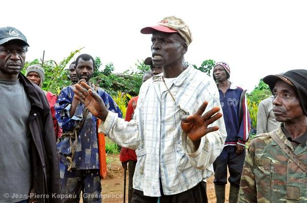 Adolf Ngbe Ebong, the regent of Babensi 2 Village, visits an oil palm plantation belonging to Herakles Farms. This village borders Talangaye and is located at the heart of an area Herakles Farms are trying to convert into oil palm  plantation, 73,000 hectares in size. Adolf, like many of his villagers, relies on farming the forest directly to the rear of his property to provide for his family. Amongst the cash crops he farms are bush mango, njangsa and cacao. Despite their opposition to project, Adolf and other villagers have discovered that Herakles Farms have ignored their wishes and bulldozed tracts of forests belonging to the village.