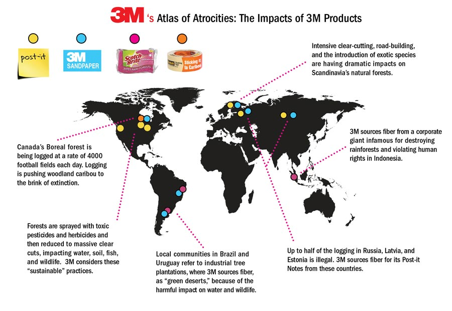 Exposed: 3M Sourcing From Forest Destruction - Greenpeace USA