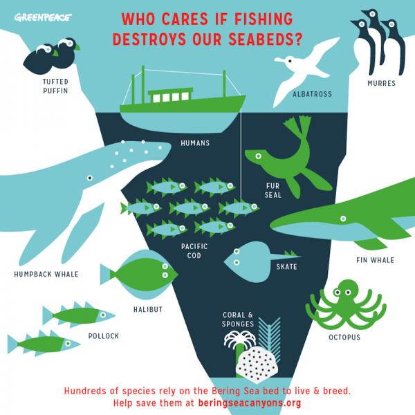 Seattle_Eco_Infographic