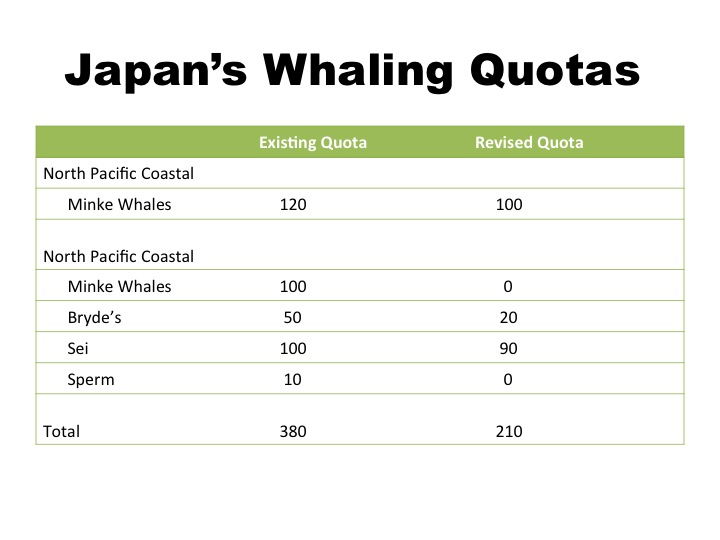 whaling in japan essay