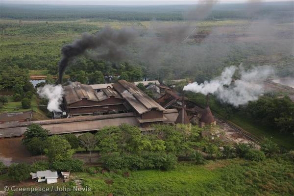 Palm oil industry facilities in Riau.