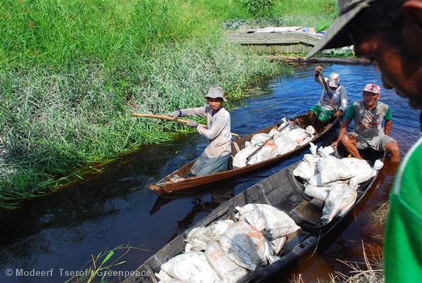 Members of the Teluk Meranti community together with NGO'S Greenpeace, Jikalahari and Yayasan Mitra Insani, use sand bags to build a dam to block the drainage of peatlands.