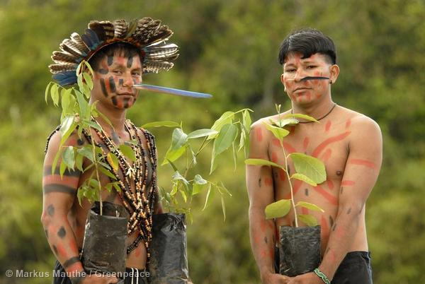 Manoki (Irantxe) indians in the State of Mato Grosso. The Manoki fight for their traditional land against the deforestation to make way for soya plantations.