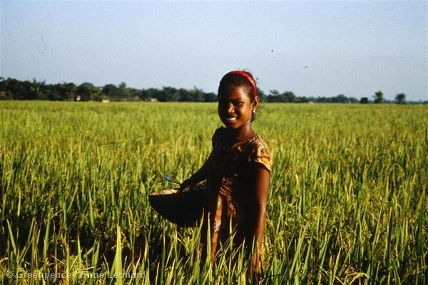 She also took this one of a girl in Bangladesh applying fertilizer to a field by hand.