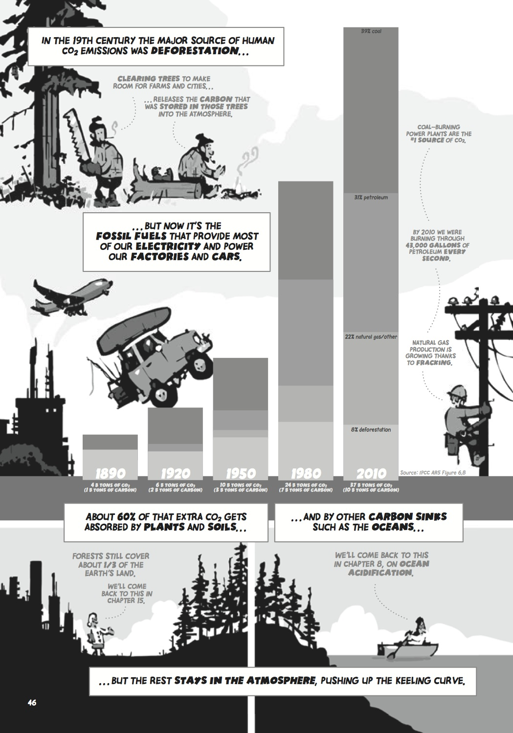 CICC p46 CO2 sources & sinks