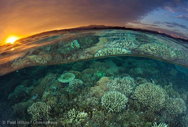 Sunrise Over Reef in Komodo National Park
