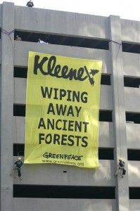 Forest Action at Kimberly-Clark in TN
