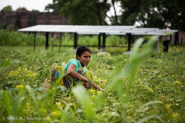A woman in Dharnai- Solar panels seen in the background.