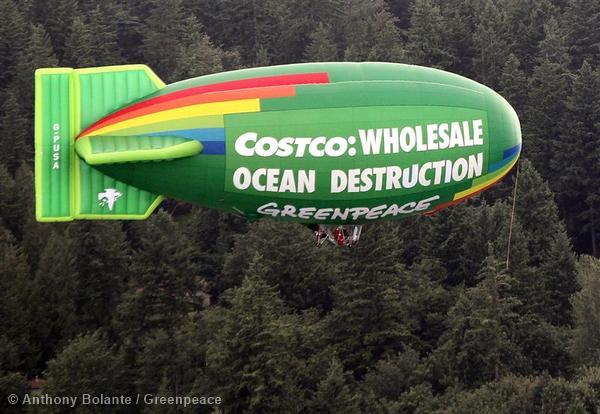 Oceans Action, Costco Headquarters Issaquah, Washington