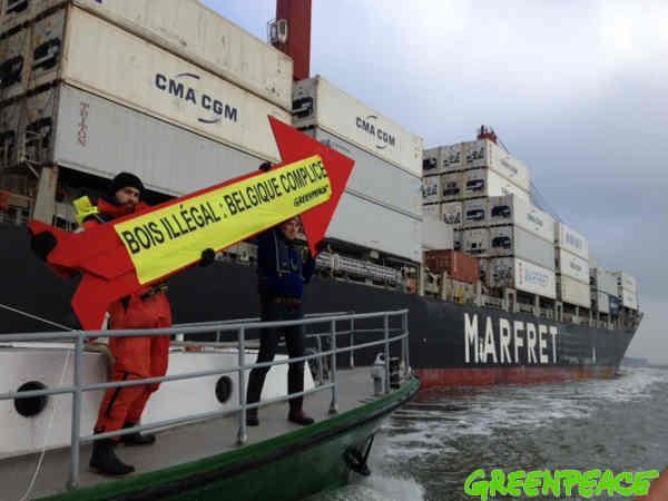 illegal Amazon timber protest