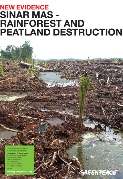 New Evidence of Sinar Mas' Rainforest and Peatland