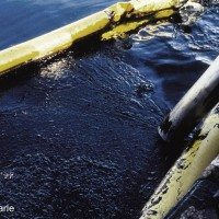 Crude Contamination